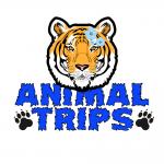 Animal Trips